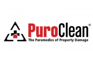Puro Clean Franchise Opportunities In South Dakota (SD)